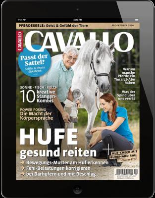 CAVALLO 10/2020 Download