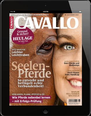 CAVALLO 11/2020 Download