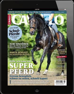 CAVALLO 8/2020 Download